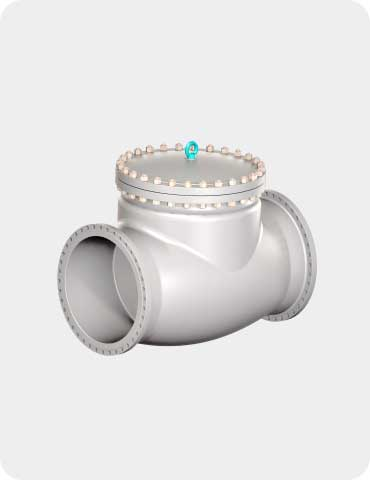 swing check valve (bolted bonnet type)
