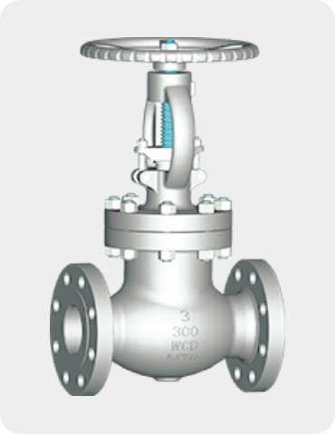 wedge gate valve (bolted bonnet type)